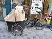 デンマークで小さい子供がいる家庭では、よくこの荷台付きの自転車に子供を載せて、保育園に送っています。
