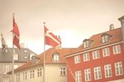 デンマーク人は国旗を庭に掲げたり、お誕生日にはパーティー会場を国旗で飾ったり、クリスマスツリーに飾ったりします。